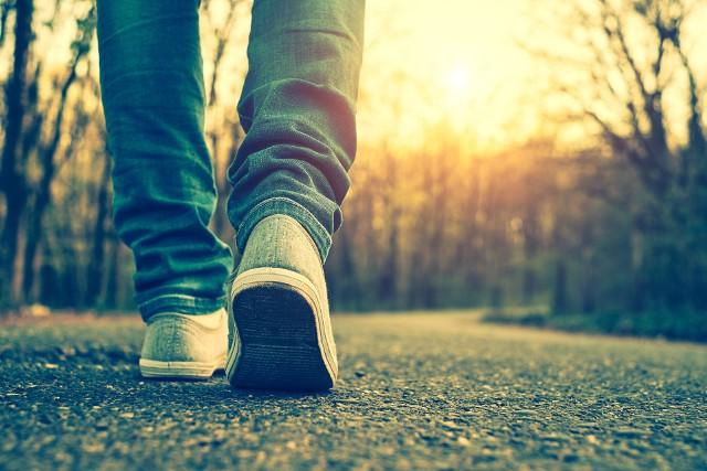 Na utrzymanie serca i mózgu w dobrej kondycji, a co za tym idzie wydłużenie życia ma wpływ codzienna, systematyczna, umiarkowana aktywność fizyczna. Nie trzeba przy tym robić 10 tys. kroków dziennie jak to było ustalone do tej pory! Badania naukowe motywują do działania.