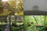 Tajemnicze i klimatyczne miejsca na jesienną wyprawę w woj. podlaskim i okolicach (zdjęcia)