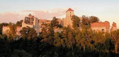 Zamek Tenczyn powstał siedem wieków temu. Jego świetność przeminęła, potem sypały się kamienie z murów, a teraz ruiny są zabezpieczane FOT. BARBARA CIRYT