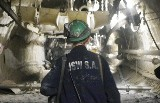 Tragiczny wypadek w kopalni Borynia Zofiówka w Jastrzębiu. Zginął górnik. Miał 45 lat