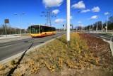 Więcej pasażerów wejdzie do autobusów i tramwajów