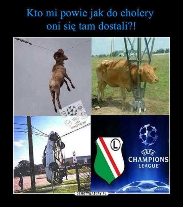 Najlepsze memy po meczu Legia - Borussia!