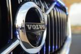 TOP3 najchętniej wybieranych samochodów. Polacy pokochali SUV-y i crossovery [13.02.2020]