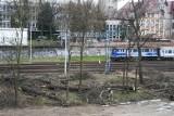 Pociąg uderzył w drzewo. Trasa kolejowa z Poznania w kierunku Piły jest już przejezdna
