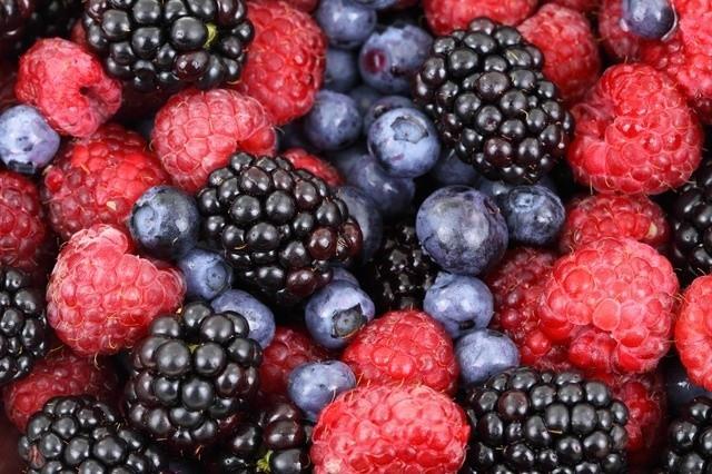 Owoce leśne spożywane prosto z krzaczka mogą prowadzić do groźnej choroby - bąblowicy.