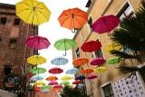 Bydgoszcz jak Portugalia! Będzie dach z parasolek nad ulicą?