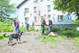 Lokatorzy z ul. Grunwaldzkiej mają spokój, bo współpracowali z policją i administracją
