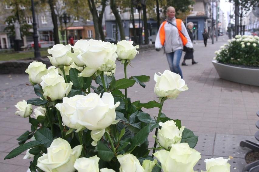 Pogrzeb Anny Przybylskiej. Tysiące białych róż ozdobiło ulicę Świętojańską [ZDJĘCIA]
