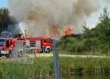 Pożar na ul. Inwestycyjnej w Słupsku. Pojechały trzy zastępy straży pożarnej