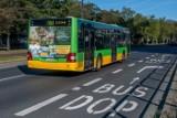 Czy autobusy 169 i 193 będą kursować punktalniej? Powinny, bo na Przybyszewskiego mają buspas. Od soboty kolejne buspasy na Garbarach