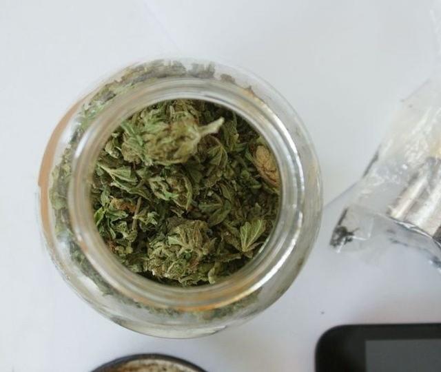 Policjanci zlikwidowali plantacje konopi i przejęli zbiory marihuany