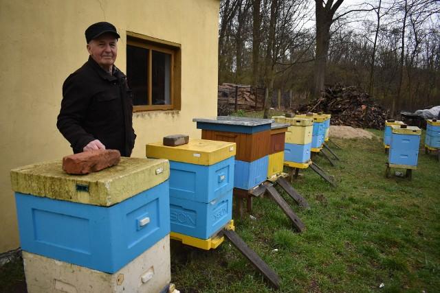Odwiedziliśmy pasiekę pana Eugeniusza z Gęstowic. Ten przyznaje, że w regionie pszczelarze mają coraz trudniej, ze względu na wycinkę robinii akacjowych.