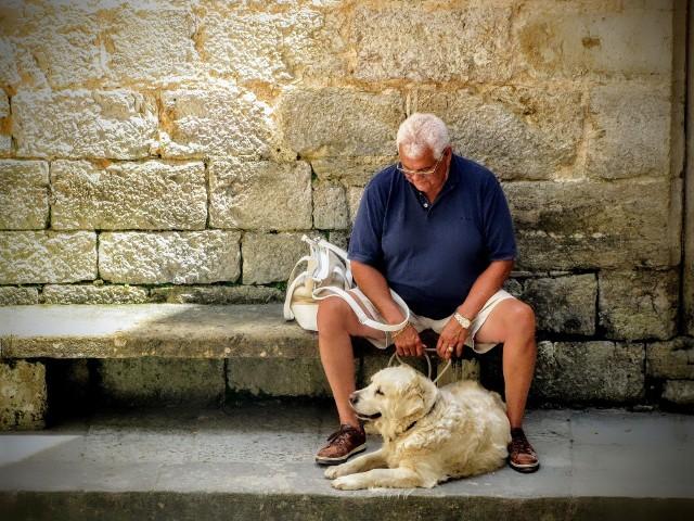 Przyjaciel zwierzak to prawdziwy przyjaciel, na każde dobre i na każde złe, zwłaszcza pies. Wypełni pustkę i obdarzy nas miłością bezwarunkową. Zanim jednak zdecydujemy się na pieska czy z hodowli, czy ze schroniska, dobrze się zastanówmy. To odpowiedzialność na wiele lat - nawet przy dorosłym zwierzaku z przytuliska przynajmniej na kilka. Drodzy seniorzy, podejmując taką decyzję, weźcie pod uwagę nie tylko wasze warunki domowe, ale też wasze możliwości zdrowotne i wiek. A gdy już dobrze wszystko przemyślicie, wtedy przygarnijcie psa. A może kota, królika czy świnkę morską? Towarzyszyć Wam będą ci mali przyjaciele na co dzień...