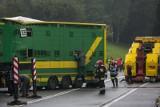 Wypadek koło Sieradza. Przewróciła się ciężarówka przewożąca bydło