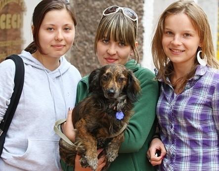 Na zdjęciu (od lewej) Hanna Godek, Marta Soleta i Klaudia Lewandowska.