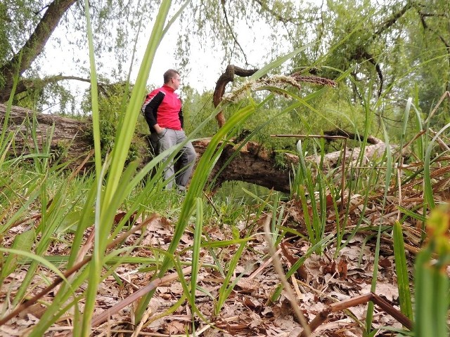 Wychodząc do lasu najlepiej założyć długie spodnie i bluzkę z długim rękawem, skarpety, zakryte buty.