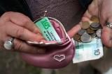Wypłata emerytur tylko raz w roku? Rząd rozważa zmiany w emeryturach