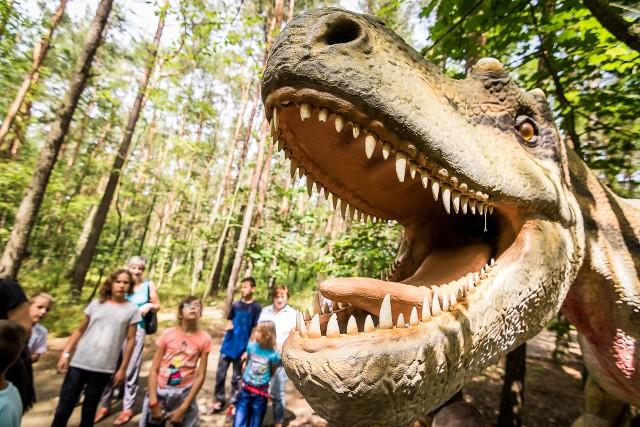 Na terenie Zaginionego Świata w Myślęcinku w pierwszą niedzielę sierpnia czekać będą nie tylko dinozaury, ale też wiele innych atrakcji i aktywności