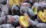 Jesienne warzywa i owoce. Oto ich ceny w Kujawsko-Pomorskiem [początek września 2021]