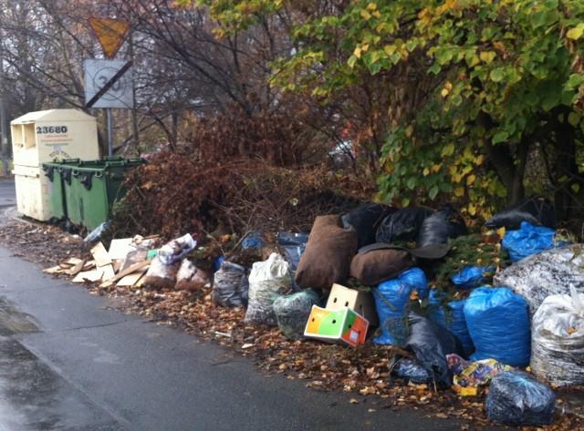 Tak od wielu tygodni wyglądają ulice na Sępolnie. A Ekosystem - zamiast zmusić WPO Alba do sprzątania - próbuje szukać wytłumaczeń. I wini mieszkańców