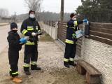 Strażacy dostarczają do mieszkańców powiatu włoszczowskiego ulotki z programem szczepień przeciwko COVID-19. Zobacz zdjęcia