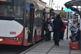 Nowa linia autobusowa w Częstochowie. Zmiany w komunikacji miejskiej