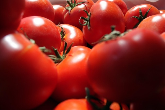 Pomidory na razie potaniały o 20 gr, ale to dopiero początek spadku cen. Fot. Dariusz Danek