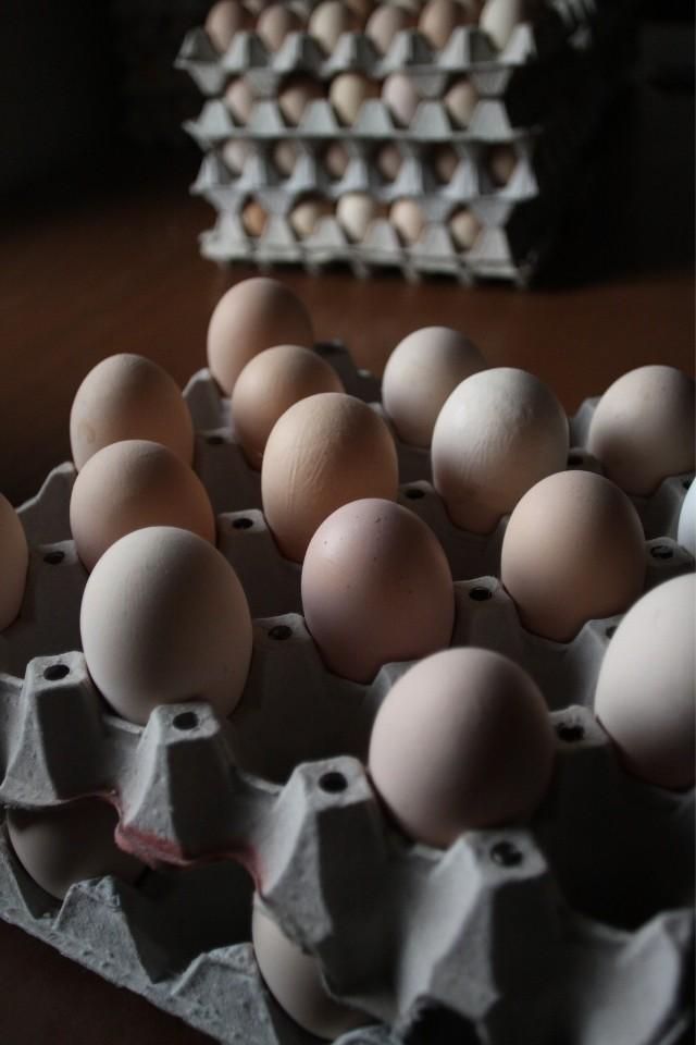 Wprowadzono zakaz sprzedawania na targowiskach drobiu i jaj, a fermy drobiu nie mogą sprzedawać żywca i jaj do odwołania
