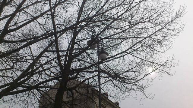 Czytelnik nadesłał nam zdjęcia latarni, która stoi na rogu ulic Wałowej i Limanowskiego.