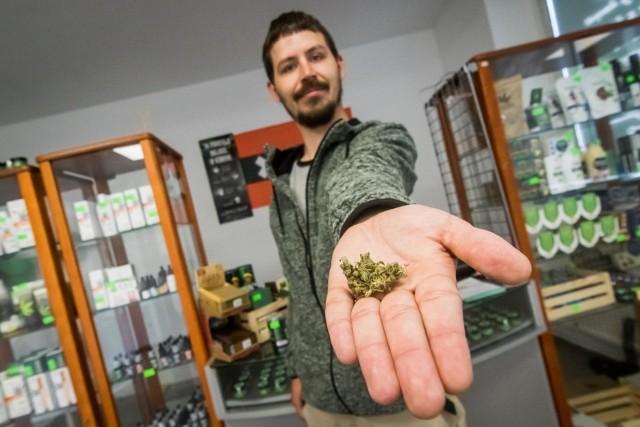 W Bydgoszczy powstaje pierwszy legalny coffee shop. Można kupić susz z konopi, ale też oleje, żele kojące, a nawet ciasteczka z marihuaną o obniżonej zawartości THC.