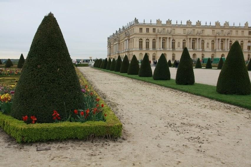 Jedna z alejek w królewskich ogrodach