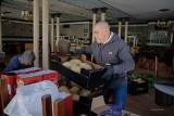 Koronawirus. Wolontariusze pracują na pełnych obrotach, pomagając seniorom [ZDJĘCIA]