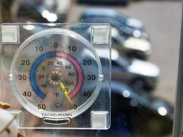 Termometr naszej Czytelniczki wskazywał 50 stopni Celsjusza
