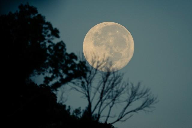 Pełnia Księżyca 2020. Najbliższa pełnia Księżyca w nocy z 1 na 2 września. Zobaczymy na niebie niezwykłe zjawisko - to pełnia Kukurydzianego Księżyca.