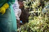 Zabił żonę i zakopał ją w ogródku? Jest akt oskarżenia
