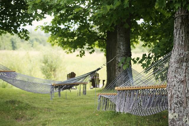 Zobacz w galerii zdjęć, gdzie powstaną miejsca wypoczynku