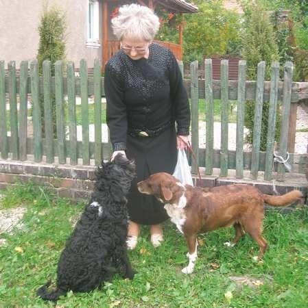- Moje psy trzymam zawsze przy sobie, nigdy nie biegają same po mieście - mówi Maria Irena Decker