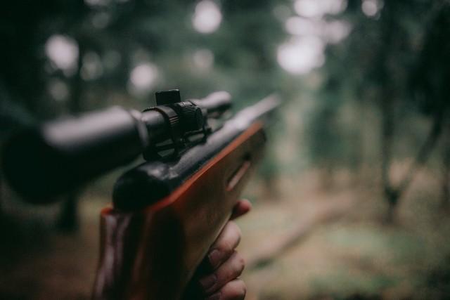 Zakaz wstępu do lasu dotyczy również myśliwych.