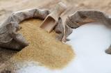 Podatek cukrowy na cenzurowanym. Apel organizacji rolniczych, producentów cukru i przetwórców żywności do premiera Mateusza Morawieckiego