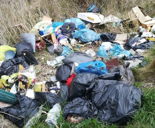 Właściciel tych śmieci wyrzuconych przy ulicy Mieszka I zapłaci mandat 500 złotych.