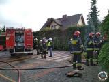 Nowogród. Pożar kwiaciarni przy zakładzie pogrzebowym [ZDJĘCIA]