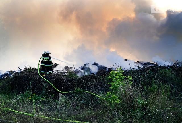 Pożar składowiska gałęzi w Trzeszczynie pod Policami