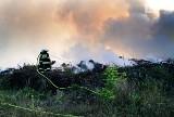 Pożar składowiska gałęzi w Trzeszczynie pod Policami. Na miejscu 9 zastępów straży pożarnej oraz samolot gaśniczy ZDJĘCIA