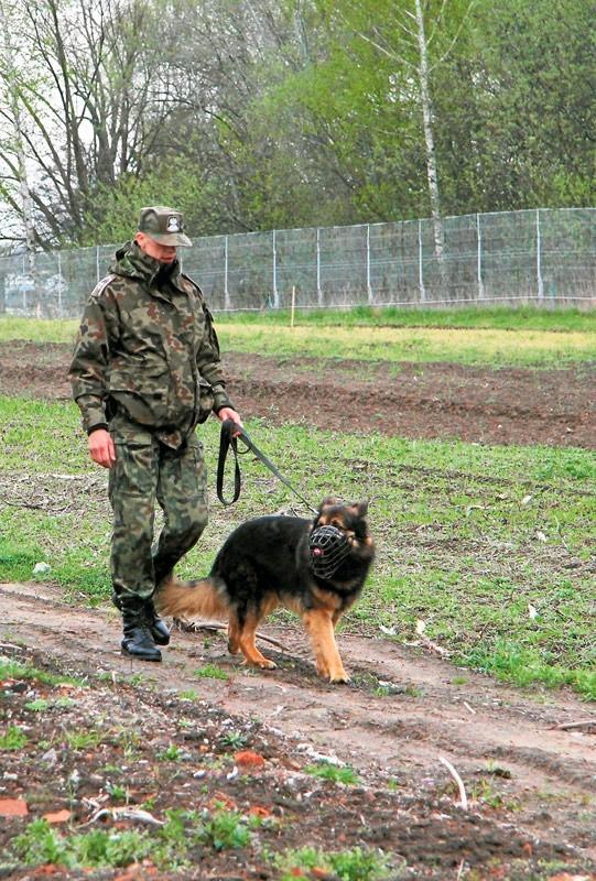 Okolice polsko - ukraińskich przejść granicznych, nz. w Medyce, są strzeżone przez ogrodzenia i dodatkowo monitorowane.