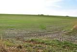 Projekt nowelizacji ustawy o gruntach rolnych. Chcą przesunąć granice w obrocie ziemią
