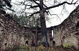 Tajemnicze i opuszczone miejsca w Lubuskiem. Fabryki, pałace, forty, jednostki wojskowe, kościoły... Tutaj nikt się nie zapuszcza!