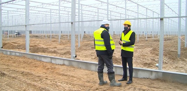 Trwają intensywne prace na budowie szklarni w Ryczywole. Powstaną najnowocześniejsze tego typu obiekty w Europie.