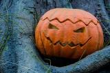 Dynia na Halloween. Jak zrobić dynię na Halloween? Wzory i szablony: jak wyciąć dynię na Halloween. Dekoracje na Halloween: zrób to sam!