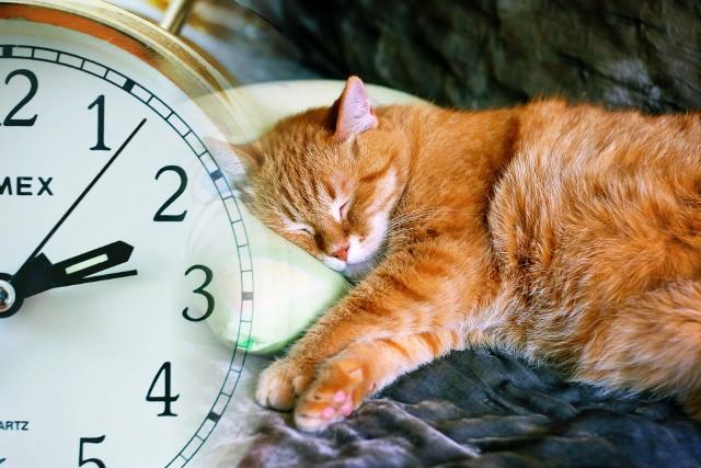 24/25 października 2020 - w ten weekend przestawiamy zegarki i zmieniamy czas z letniego na zimowy