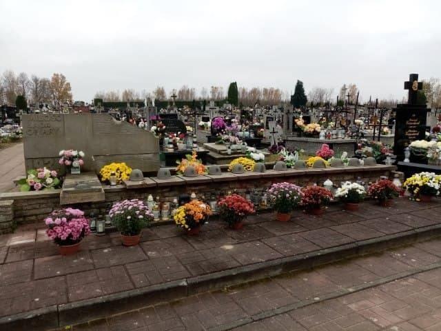 Chryzantemy stanęły także na przysuskim cmentarzu.